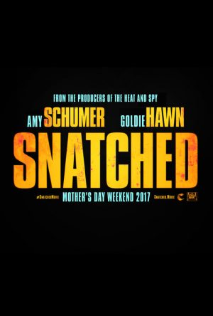 snatched-poster