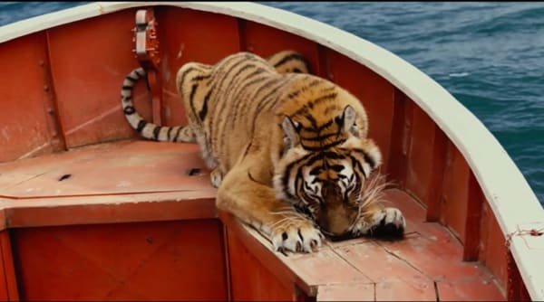 life-of-pi-credit-20th-century-fox richard parker.jpg