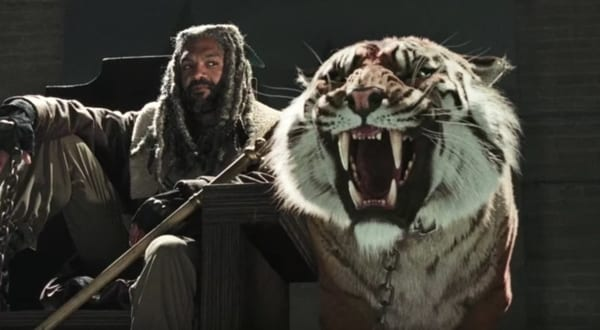 the-walking-dead-credit-amc shiva tiger.jpg