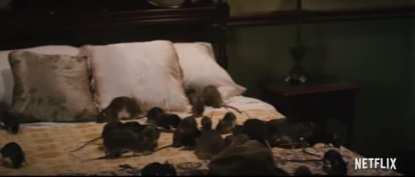 netflix 1922 rats